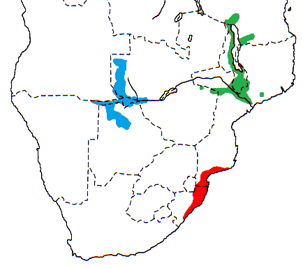 Southern Brown-throated Weaver map