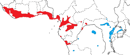 Yellow-mantled Weaver map