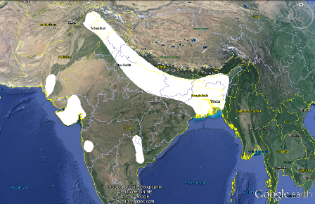 Black-throated Weaver map