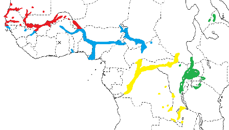Yellow-backed Weaver map