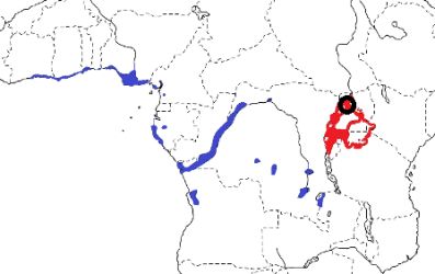 Slender-billed Weaver map