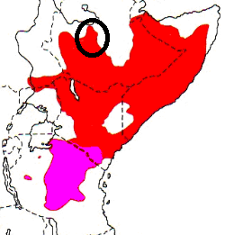 White-headed Buffalo-Weaver map